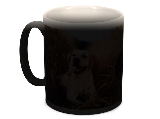 Magic Black Photo and Heat Mug